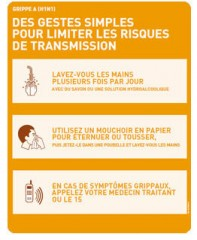 gestes vs grippe.jpg